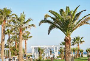 03-palm-trees-on-the-green-garden-of-grecotel-creta-palace-in-crete